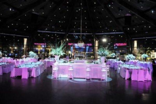 הפקת חתונות באולמות